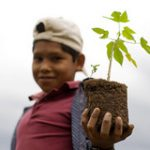 Sustainable future - boy with tomato plant (Photo: Oxfam)