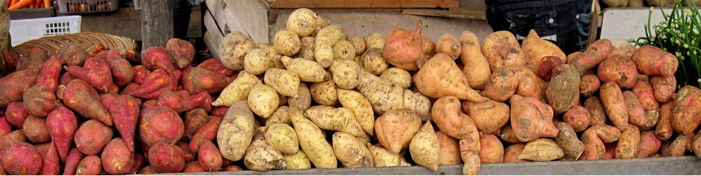Sweet potato tubers with different skin colors, on sale in Indonesia. CC: Wikipedia.
